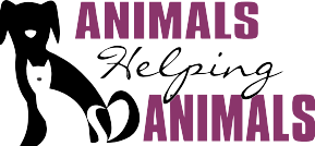 Animals Helping Animals
